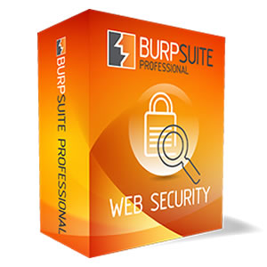 ITCS (IT Consulting and Services) Burp Suite Professional